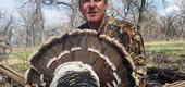View the Album: Turkey Hunting  5 images